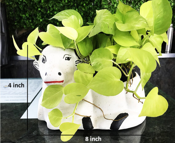 Beautiful ceramic cow planter