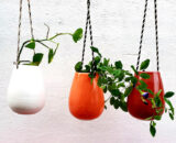 Colorful wall hanging planter